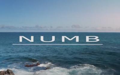 Numb – Matt Meola